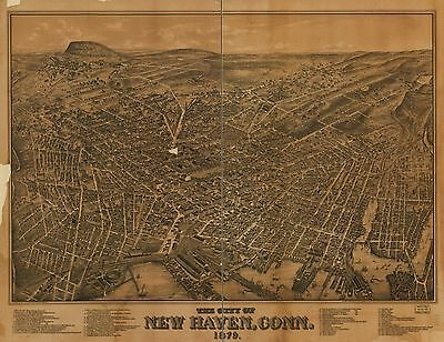Poster Print Antique American Cities Towns States Map New Haven Conn