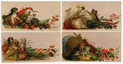 PUPPY DOGS Kitten Cat PARROT 4 Victorian Cards c 1880's Name or Trade Cards
