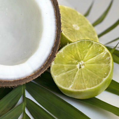 Coconut Lime -  Fragrance Oil- Candles / Soap / Diffuser - 10 ML