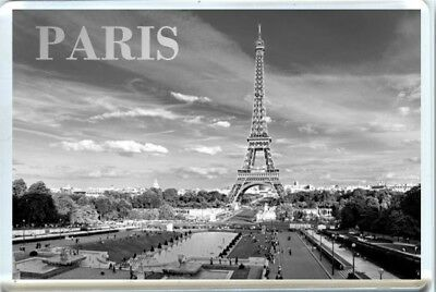 Paris, Eiffel Tower, France Fridge Magnet