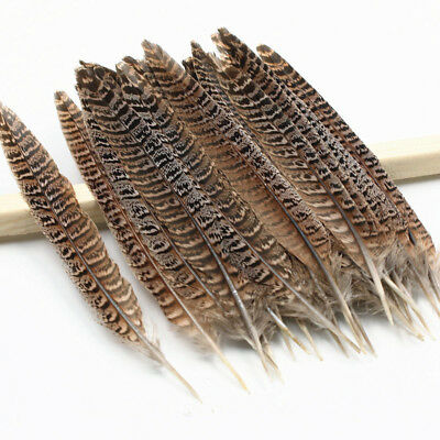 Wholesale natural pheasant tail feathers 4-14 inches/10-35cm 10-100pcs