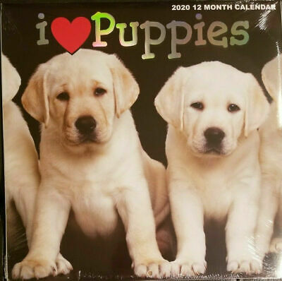 "2019 I Love Puppies 12 Month Wall Calendar 12"" X 24"" New Sealed"