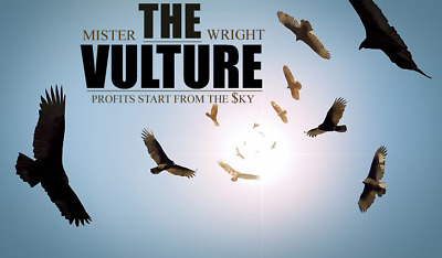 The Vulture: Profits Start From The Sky - ThinkorSwim Required, Forex Strategy