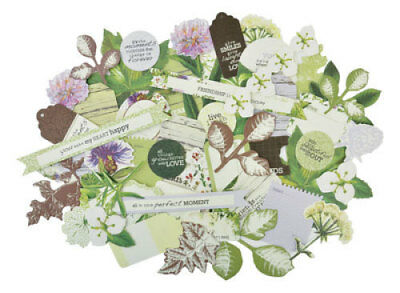 *A&B* KAISERCRAFT Scrapbooking Collectables - Botanica - CT831