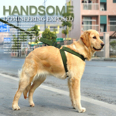 New Big Dog No Pull Chest Harness and Leash Set