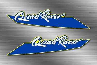 1989 suzuki Front Fender 2pc LT250R, LT250 250 quad racer Decal sticker graphics