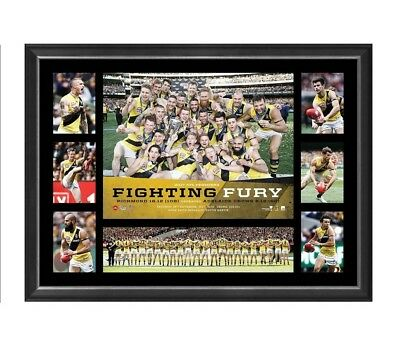 RICHMOND TIGERS 2017 PREMIERS FIGHTING FURY FRAMED PRINT Cotchin, Martin, Rance