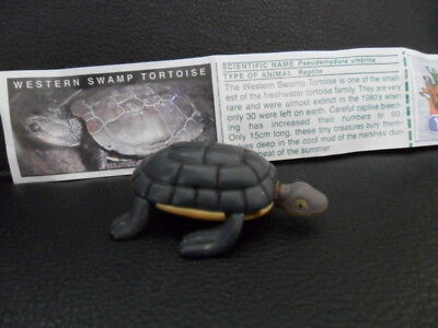 Yowies Extremely Rare Series 1 * Western Swamp Tortoise * With Scientific Papers