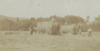 OLD VINTAGE REAL PHOTO POSTCARD RPPC of FARMERS HARVEST BRINGING IN THE SHEAVES