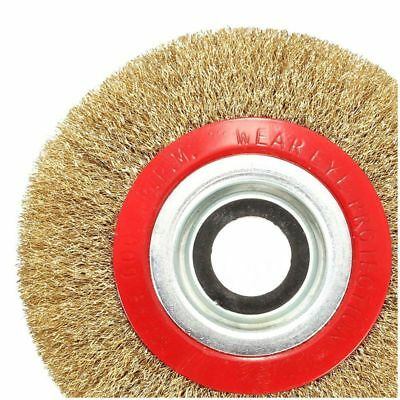 Wire Brush Wheel for Bench Grinder Polish + Reducers Adaptor Rings,6inch 15 C2K7