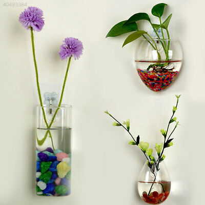 Wall Glass Hydroponic Water Plants Flower Clear Hanging Vase Home Decor