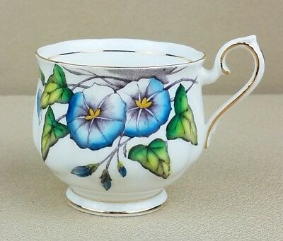 Royal Albert Bone China Flower of the Month Series #9 MORNING GLORY Tea Cup