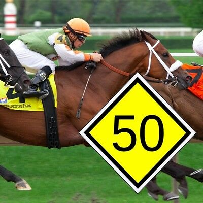 50s Horse - Horse racing system to find consistently winning horses