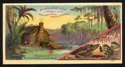 BAYOU cabin FROG n GATOR 1880s AYER'S AGUE CURE Medical CURE Quack swamp CABIN
