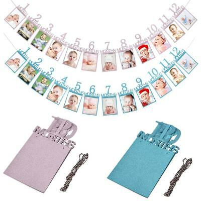 1st Birthday Recording 1-12 Month Baby Photo Bunting Banner Party Decor DIY Gift