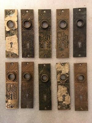 Lot #401 Matching Cast Brass Victorian Style Small Back Plates Antique Hardware