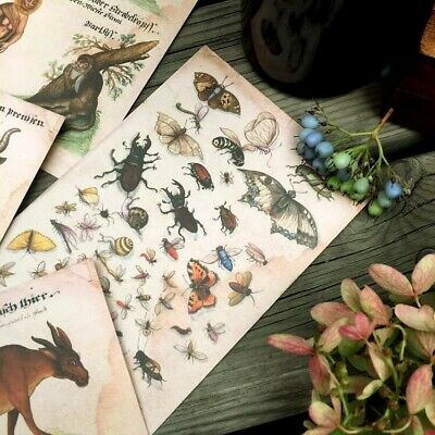 Mythical Creatures Set 16 Postcards - Antiqued Finish on Quality Card Stock
