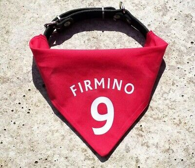 Firmino 9 Pet Shirt Bandana | for Liverpool LFC cats and dogs | kit jersey squad