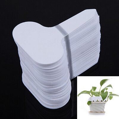 100pcs Lot Plastic Plant T-type Tags Markers Markers Nursery Garden Labels