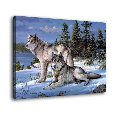 """16""""x22""""Watchful Pause Wolf Animal HD Canvas Print Home Decor Room Wall Picture"""