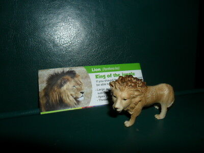 Yowies * New Rescue Series * Lion + Papers