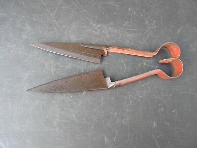Vintage Burgon and Bell Sheep Shears Sheffield mad in England