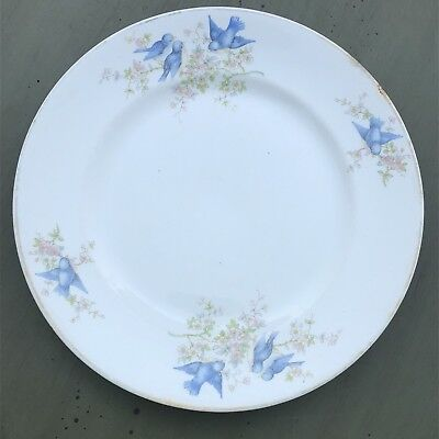 """Vintage China Plate 9""""  Knowles, Taylor, & K Bluebirds Flowers Gold Band"""