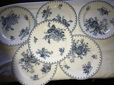 6 Assiettes Plates Sarreguemines Decor Flore