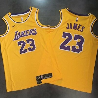 competitive price dad55 ca8ce NEW LEBRON JAMES Icon Edition Swingman Jersey 2018-2019