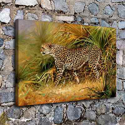 Grass Leopard Animal Paintings Room HD Canvas Print Home Decor Wall Art Picture