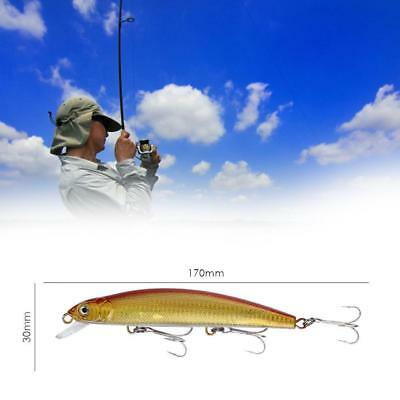 Large Minnow Fishing Lures Sinking Minnow Fishing Bait Artificial Crank_BaitM