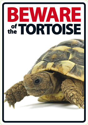 Beware of the Tortoise - A5 Plastic Sign