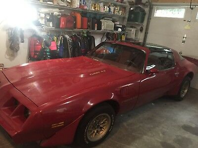 1980 Pontiac Firebird  1980 Firebird Trans am 4.9l Turbo