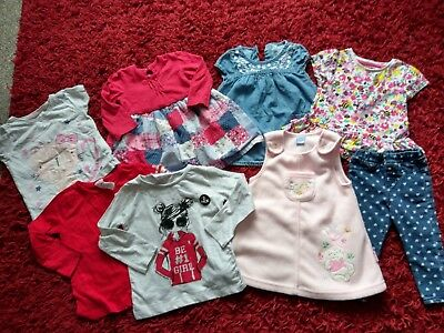 Baby Girl Clothes Bundle 9-12 & 12-18 Months