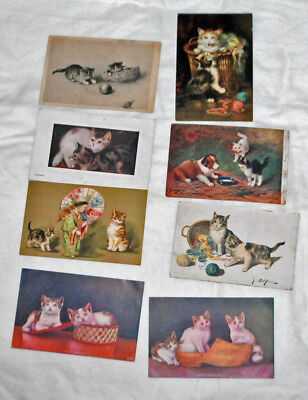 Eight Antique Postcards Cat Cats Theme
