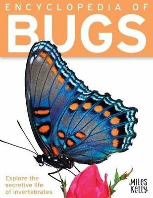 Bug Encyclopedia For Kids Book Childrens Encyclopedia of Bugs