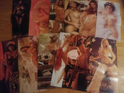 Playboy Magazine  Complete 1972 Centerfold Collection 12 months Pin-ups! Lot 10