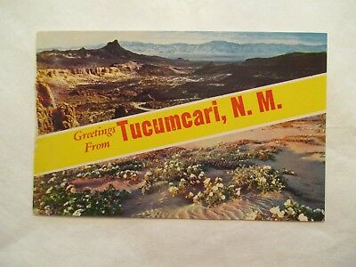 Greetings from Tucumcari New Mexico NM Postcard