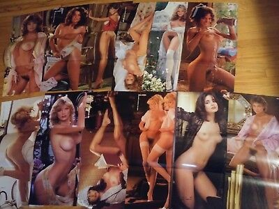 Playboy Magazine  Complete 1979 Centerfold Collection 12 months Pin-ups! Lot 16