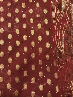 saree with stitched blouse (size36). Georg/ chiff with sequin Work- FREE SHIP