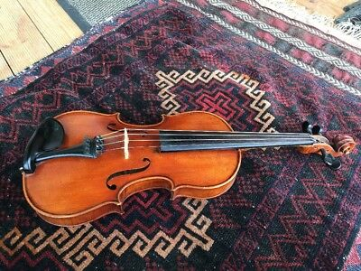 Violin Unlabelled No Label One 1 Piece Back Single Llovely Condition