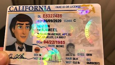 Fake ID Card holograph, Fake License with hologram, Fun, scannable, customize it