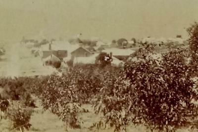 Antique Australian STEREO PHOTOGRAPH. Old Adaminaby Township1900-Snowy Mountains