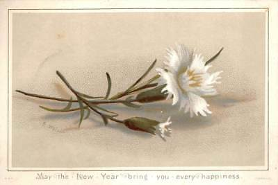 Victorian New Year Greeting Card Flower Floral
