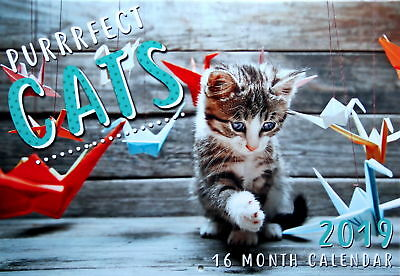 Cats 2019 Rectangle Animals Wall Calendar 16 Month New Year Christmas Decor Gift
