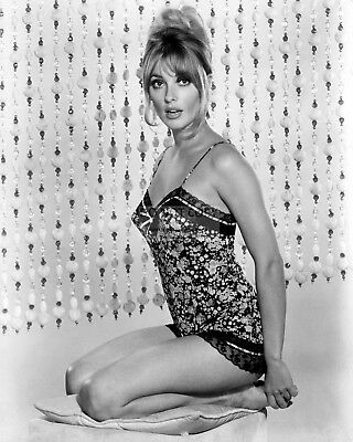 Actress Sharon Tate Pin Up - 8X10 Publicity Photo (Rt176)