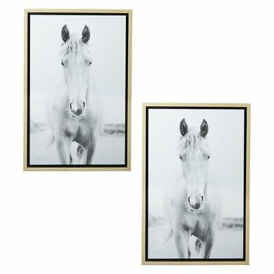NEW Amalfi Meadow Horse Framed Print (Set of 2)