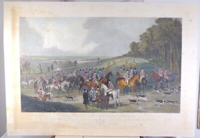Antique Engraving Hand Coloured Fox Hunting Hounds Henry Calvert 19th C LARGE