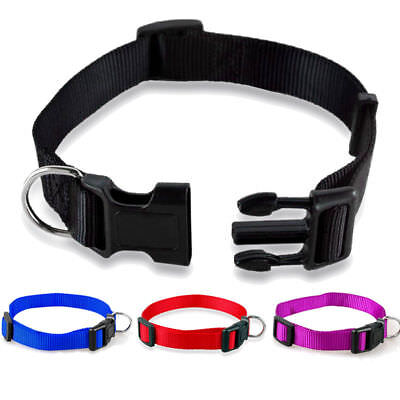 Nylon Dog Puppy Collar Bright & Basic Solid Color Pet 8 Colors 3 Sizes No Leash