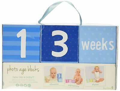 Baby First Year Milestone Keepsake Weekly Monthly Blocks Photo Prop Nursery Blue